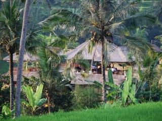 View of Villa Santai from the Ancient Rice Paddies