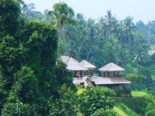 View of Villa Santai from Up River