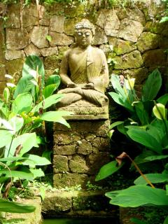 Buddha Statue at Entrance of Villa with Relecting Pool