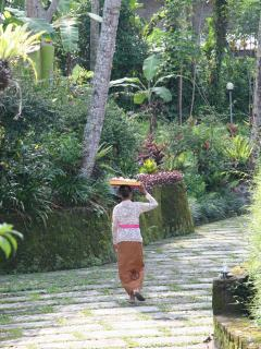 One of the staff member\'s mother leaving the villa after providing Balinese offerings