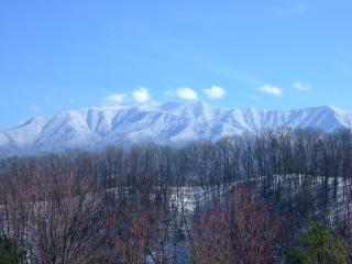 Snow covered Mt. Leconte views from the deck of moonshine cabin