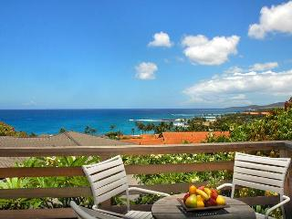 Amazing Views Hale - 270 degree Stunning Views from 2 Story Poipu Beach House