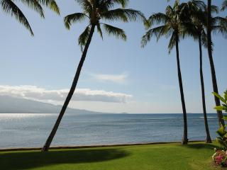 Best Oceanfront, LAULOA, Remodeled, Curved UHD-TV, WIFI, HD-TV in Master Bedroom, Maalaea