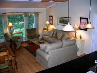 Comfy sofas, vaulted ceilings, big windows
