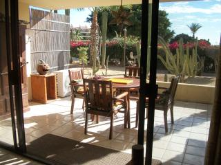 Large private patio - sunny in AM and part shaded in PM, perfect! - view of cactus garden and golf