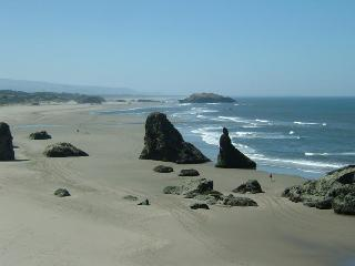 Steps to Beach,No Stairs!,Comfy,Couples, Nice!, Bandon
