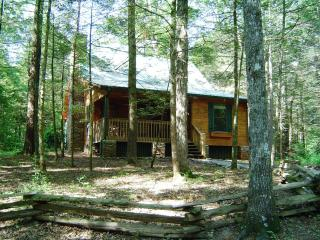 """Appalachian""- Beautiful, Clean, Wireless, No Fees, Townsend"