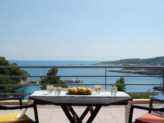Seafront Villa, 6/7 Bedrooms,outstanding location, Votsi