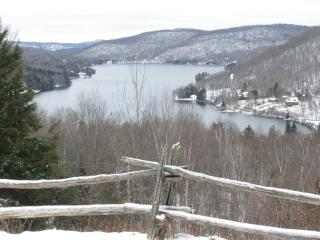 Mont Tremblant Lakeview Terrace - A Real Gem - Loo