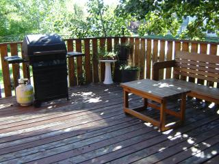 Large Deck & Barbecue & Benches
