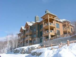 Luxury Condo - Directly on ski slopes - Equinoxe