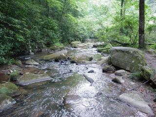 Near Boone Secluded Overlooking Creek/Hot Tub/WiFi/Choose&Cut Pkg or Winter Rate