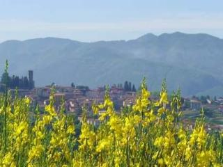 Holiday panoramic villa for rent in Barga, Tuscany,close to Lucca Pisa Florence