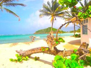 Wildflower Villa - Palm Island, San Vicente y las Granadinas