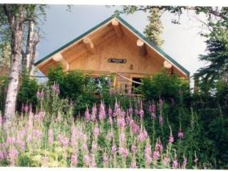 Orca Lodge on the Kenai River in Soldotna, Alaska