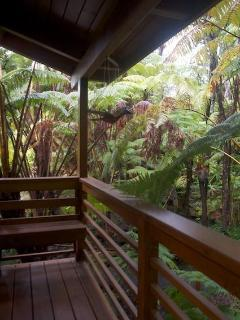 Hiker's retreat lanai (porch) overlooking rainforest and koi ponds