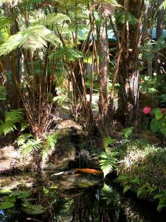 The gardens contain a few secluded koi ponds for your enjoyment.