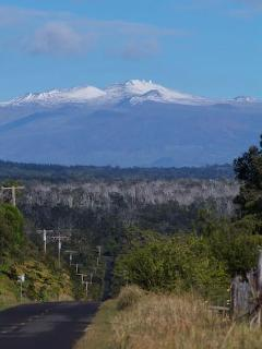 Hawaii even gets snow in the winter, on the very peaks of the tallest volcanoes.