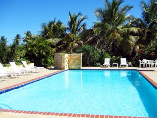 The Villa at Casa Ladera: Pool, steps to the beach