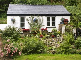WATERMILL STUDIO COTTAGE, pet friendly, country holiday cottage, with a garden in Afonwen, Ref 4472, Mold