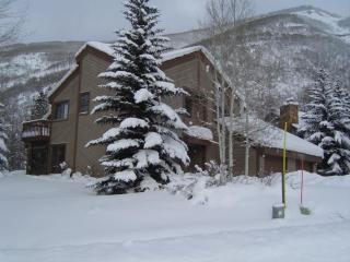 Vail Ski House- Very Close to Slopes!