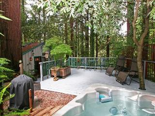 Guerneville Cottage,Decks,Skylight, Hottub! Romantic get away!