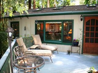 Redwood Rendez-vous Romantic Get-away! Hot Tub, Skylights, Wood stove!, Guerneville