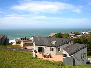 'Selkie Seas' Bluff Beauty! VIEWS, Dogs Welcome!Game room Walk to Beach!