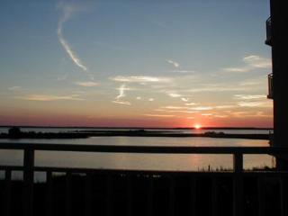Walk to Seacrets. Sunsetbay  NO SENIOR WEEK RENTAL, Ocean City