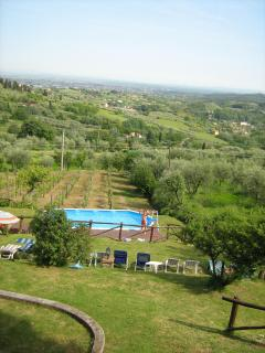 Ciclamino House - The view of garder and pool