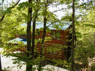 Sky Balcony off Master/Hiking/Fishing/Hot Tub/WiFi/Choose&Cut Pkg or Winter Rate, Boone