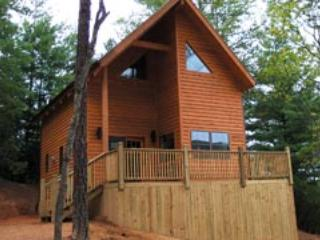 Blue Ridge Parkway Cabin HOT TUB Get a 3rd night FREE in Dec or Jan