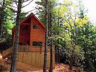 Blue Ridge Parkway Cabin HOT TUB Get a 4th night FREE Lay-a-way with $100 down!