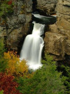 www.blueridgeparkwaycabinrentals.com  250 waterfalls