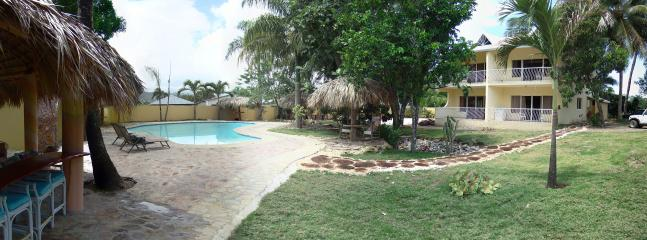 Backyard lush gardens, with gorgeous large pool, thatched roof bar, and condo bldg with 4 condos