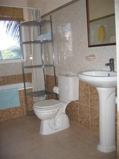 Tropical vistas of palm trees seen from mezzanine bathroom with large mirrored medicine cabinet