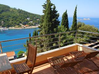 La Note Bleue| Beautiful Seaside 1-BR with Terrace, gorgeous Views and Parking!, Dubrovnik