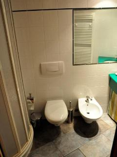 The bathroom is small, but there is enough space for a bidet!