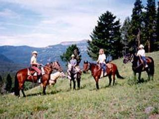 Horseback rides- we use the Stermitz Ranch down the road for guest rides.