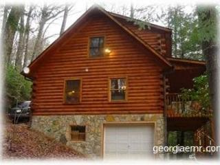 Skip's-Is a charming, log cabin in the heart of the mountains * Vogel, Blairsville