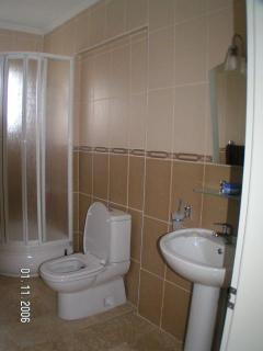 Lower floor bathroom