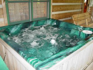 Private Log Cabin-Boone 15 min/Hot Tub/WiFi/Hiking/Fish/Spring Discount/Free Nts