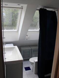 Bathroom as viewed from the door