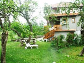 The Skvor Holidayhouses Robidisce