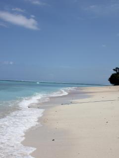 Hari Puri's beach