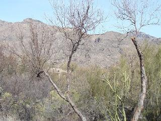 2 Bedroom 2 Bath First Floor  with Stunning Mountain Views, Tucson
