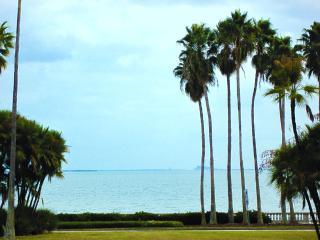 Ocean-Bayfront 2 BR in SOHO Hyde Park on Bayshore Blvd, Tampa