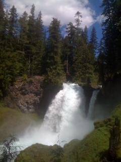 Sahalee Falls - McKenzie River Trail