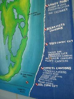 Just a few of many Dive Sites. Try White Sands or Genie!