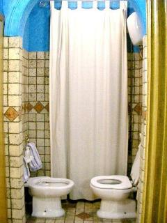 The toilet and the bidet